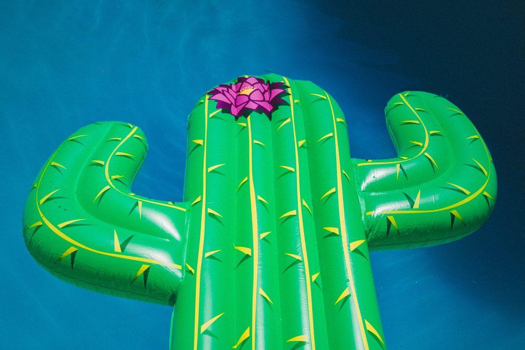 Flotador de Cactus