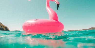 flotador de flamenco